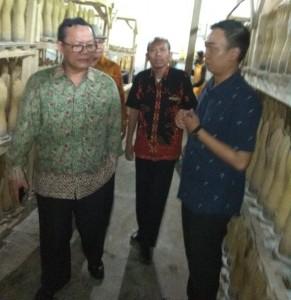 Deputi Bidang Restrukturisasi Usaha KUMKM, Kemenkop dan UKM Abdul Kadir Damanik (Foto:maitim/herbert)